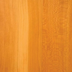 sycamore_wood_1